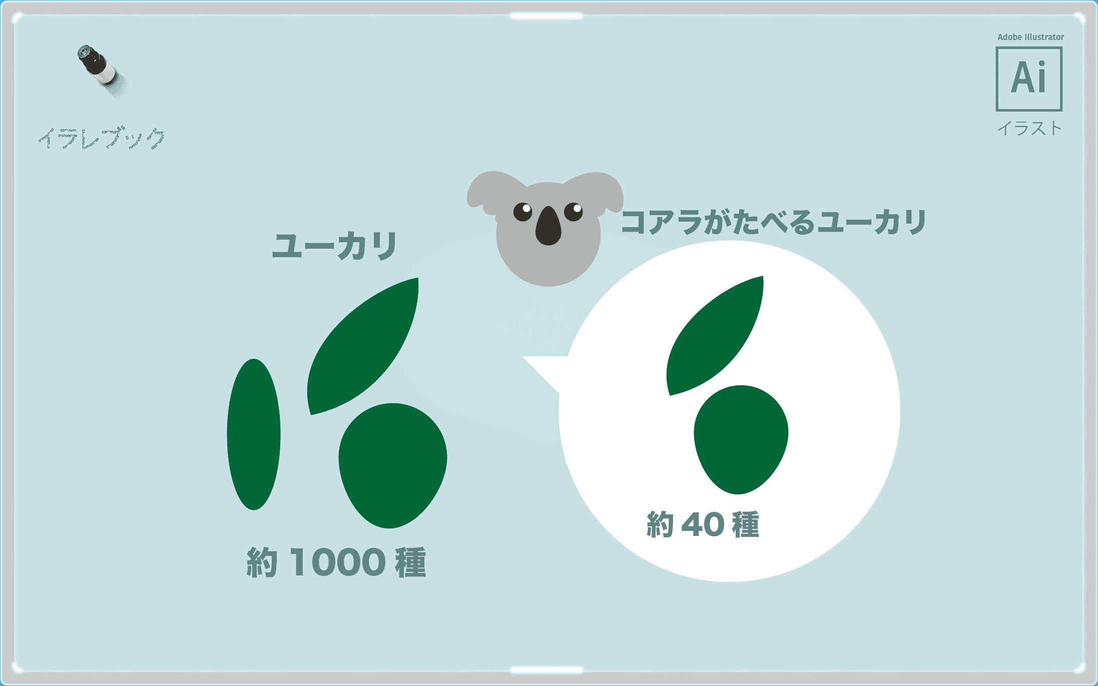 アロマオイル ラベンダー 檜 ユーカリがおすすめ 使い方と効能一覧 Aromaoil